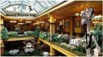 cbrasserie-cafe-commerce3